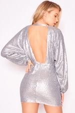 BL163-silver-back.jpg